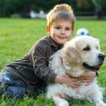 25 Best Dog Breeds For Kids