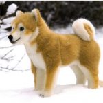 Shiba Inu – Facts, Pictures, Puppies, Temperament